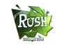 Skin Sticker | RUSH (Foil) | Cologne 2016