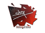 Skin Sticker | shox | Cologne 2016
