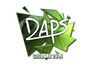 Skin Sticker | daps (Foil) | Cologne 2016