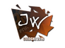 Skin Sticker | JW | Cologne 2016