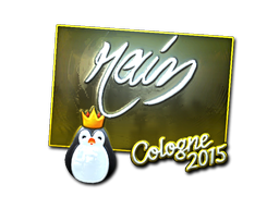 rain   Cologne 2015