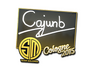 Skin Sticker | cajunb | Cologne 2015