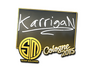 Skin Sticker | karrigan | Cologne 2015