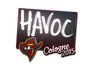 Skin Sticker | Havoc | Cologne 2015