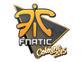 Skin  Fnatic | Cologne 2015