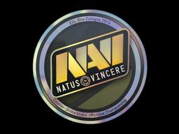 Natus Vincere | Cologne 2014
