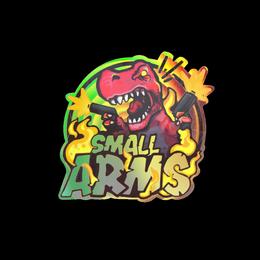 Small Arms (Holo)