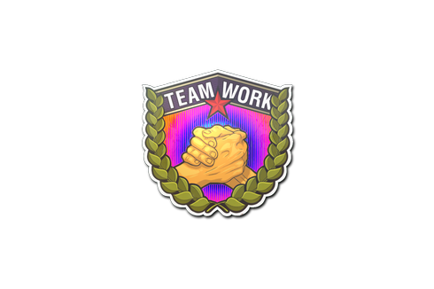 Sticker | Teamwork (Holo) Prices