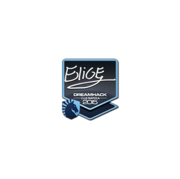 Sticker | EliGE | Cluj-Napoca 2015
