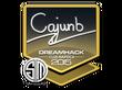 Sticker cajunb | Cluj-Napoca 2015