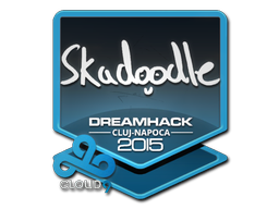 Skadoodle | Cluj-Napoca 2015