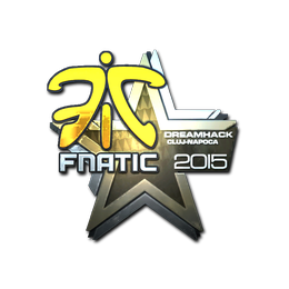 Fnatic (Foil) | Cluj-Napoca 2015