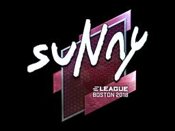 Sticker | suNny (Foil) | Boston 2018