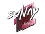 Skin Sticker | suNny | Boston 2018