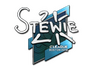 Skin Sticker | Stewie2K | Boston 2018