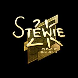 Stewie2K (Gold) | Boston 2018