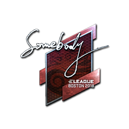 somebody (Foil) | Boston 2018