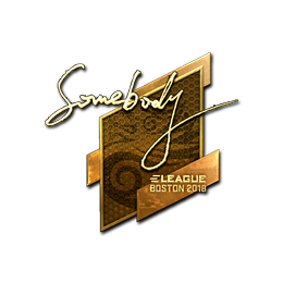 somebody (Gold) | Boston 2018