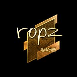 ropz (Gold) | Boston 2018