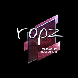 ropz (Foil) | Boston 2018