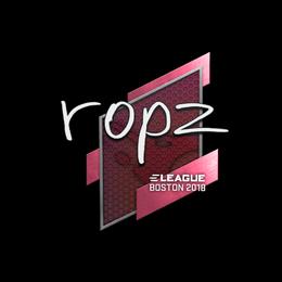 ropz | Boston 2018