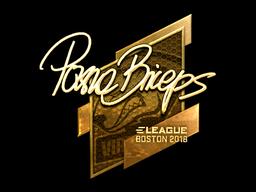 pashaBiceps | Boston 2018