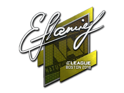 Sticker | flamie | Boston 2018