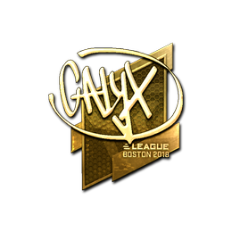 Calyx (Gold) | Boston 2018