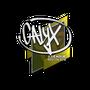 Sticker   Calyx   Boston 2018
