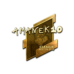 AmaNEk (Gold) | Boston 2018