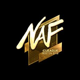 NAF (Gold) | Boston 2018