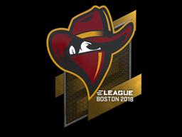 Sticker | Renegades | Boston 2018