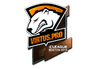 Skin Sticker | Virtus.Pro (Foil) | Boston 2018