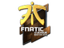 Skin Sticker | Fnatic (Foil) | Boston 2018
