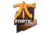 Skin Sticker | Fnatic | Boston 2018