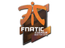 Skin Sticker | Fnatic (Holo) | Boston 2018