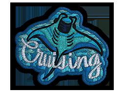 Patch | Cruising Ray