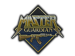 Patch | Metal Master Guardian