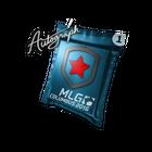 Autograph Capsule | Gambit Gaming | MLG Columbus 2016