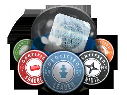 Team Roles Capsule