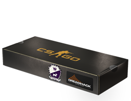DreamHack 2014 Cobblestone Souvenir Package