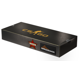 DreamHack 2014 Cache Souvenir Package