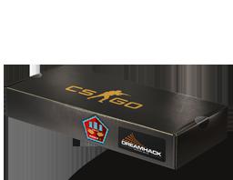 Сувенирный набор «DreamHack 2014 Mirage»