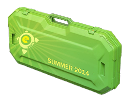 Летний кейс eSports 2014