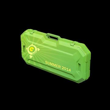 eSports 2014 Summer Case