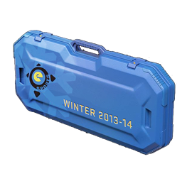 eSports 2013 Winter Case