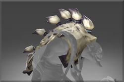 Headdress Of The Yuwipi