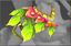 Araceae's Tribute Necklace