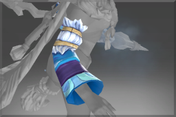 Sleeves of the Winterbringer