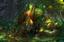Loading Screen of Eldritch Gnarl